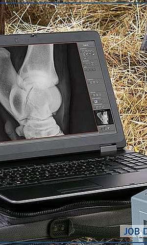 Aparelho de raio x digital veterinário preço
